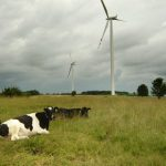 In Poland share of renewable energy grows